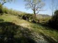 Kamena kuća, Prodaja, Motovun, Kaldir