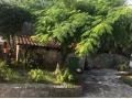 Obiteljska kuća, Prodaja, Rijeka, Zapad