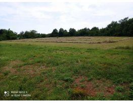 Poljoprivredno zemljište, Prodaja, Vodnjan, Vodnjan