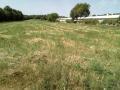 Poljoprivredno zemljište, Prodaja, Barban, Barban